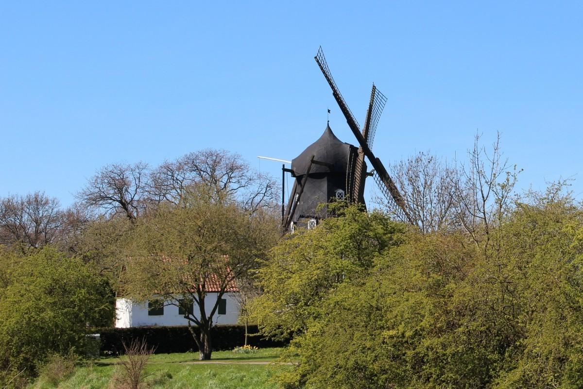 Windmill in Malmö Park